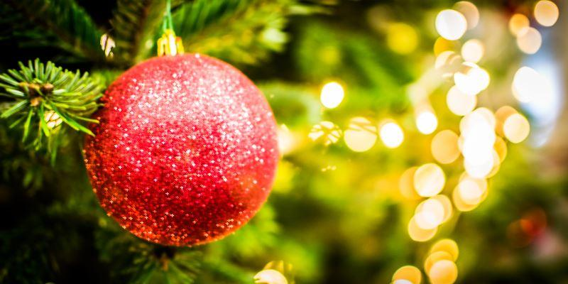 Five things you need to know about Christmas at the Library