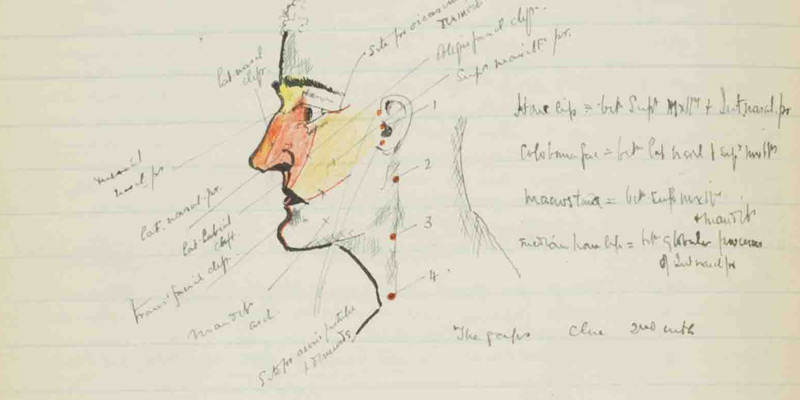 A sketch of a head in a notebook with medical notes