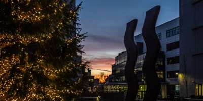 The Christmas tree in the centre of campus, alongside the