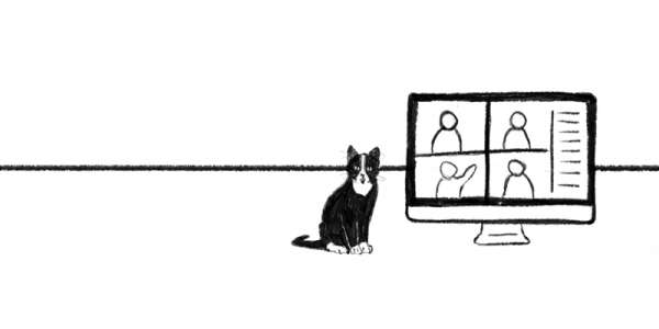 Line drawing of a cat sat next to a computer screen showing four people in an online meeting